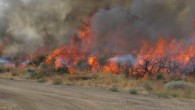 Fire is a fact of life in Lassen County – Wildland ecosystems are fire dependent and need fire to survive. However, homes and communities in the Wildland-Urban Interface (WUI) – […]